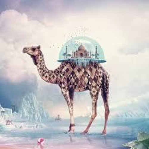 omar abbosh's avatar