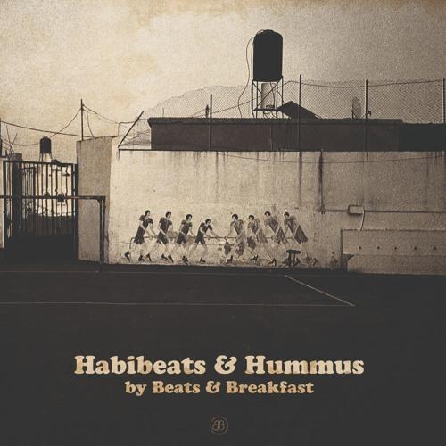 Habibeats & Hummus's avatar