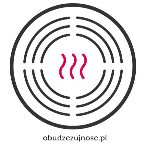Andrzej Frat - rozmowa dla radio Eska