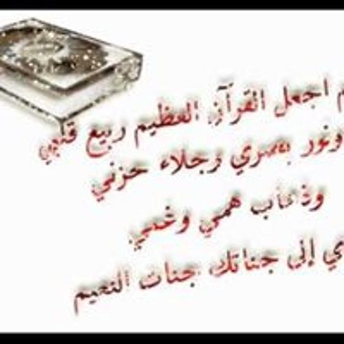 رامي النيل