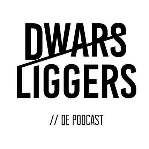Dwarsliggers de Podcast's avatar