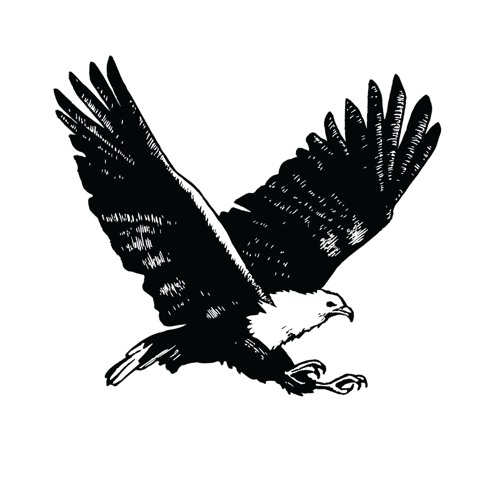 Diverge Podcast's avatar