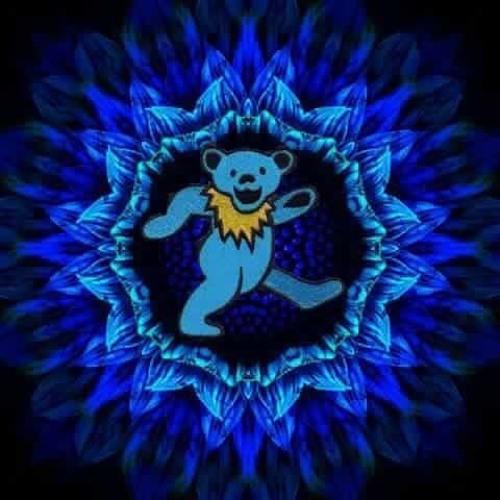 Timm Van Weerd's avatar