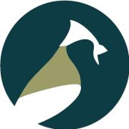 CouncilOAC's avatar