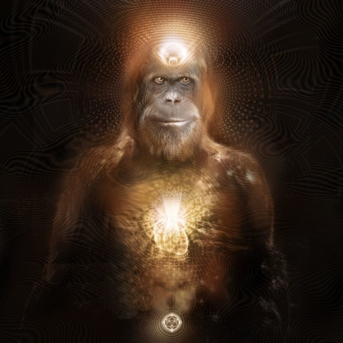 Mr Squatch's avatar