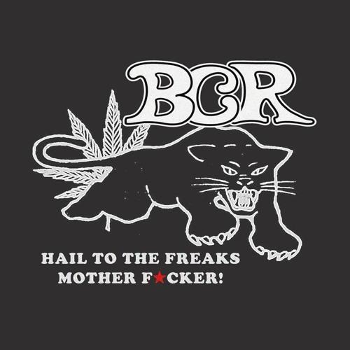 Black Cat Revue's avatar