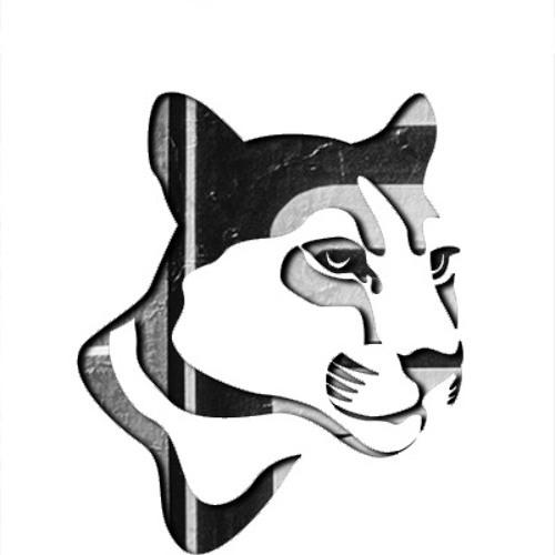 Puma's Street's avatar