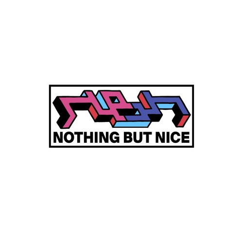 Nothing But Nice Records's avatar