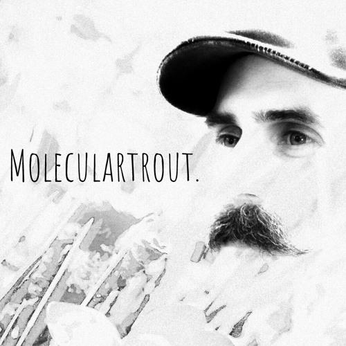 Moleculartrout.'s avatar