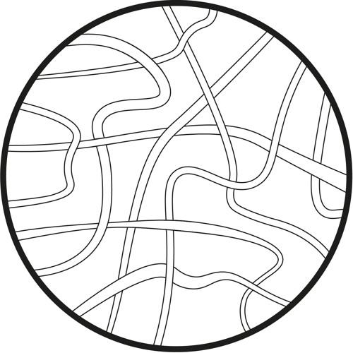 rizoom podcast's avatar