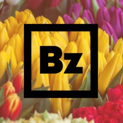 BARBALOOT SUITZ's avatar