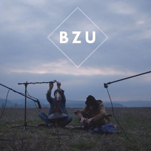 BZU's avatar