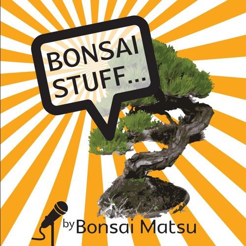 Bonsai Matsu's avatar