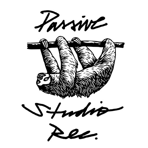 Passive Studio's avatar