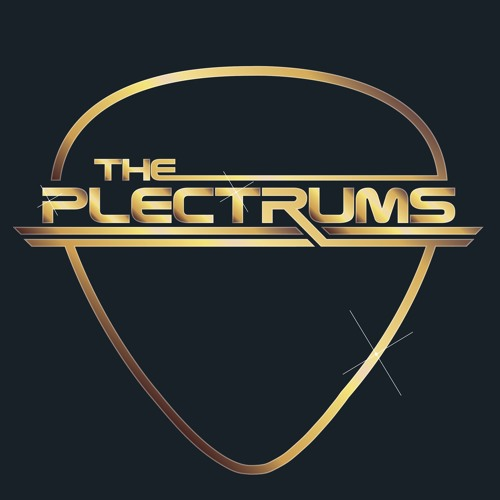 The Plectrums Wedding Band's avatar