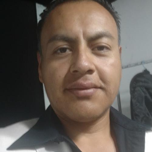 01avsleal's avatar