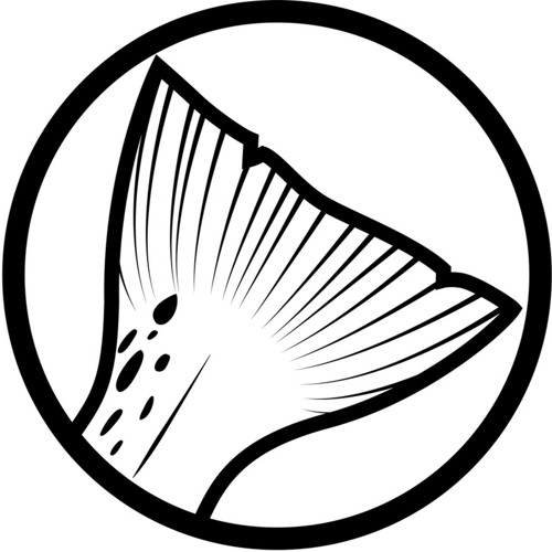 Relentless Angling's avatar