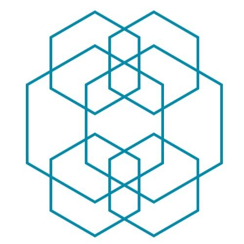 ensemble reflektor's avatar
