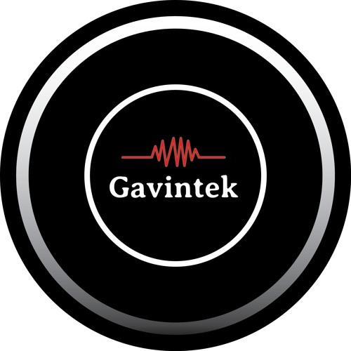 Gavintek's avatar