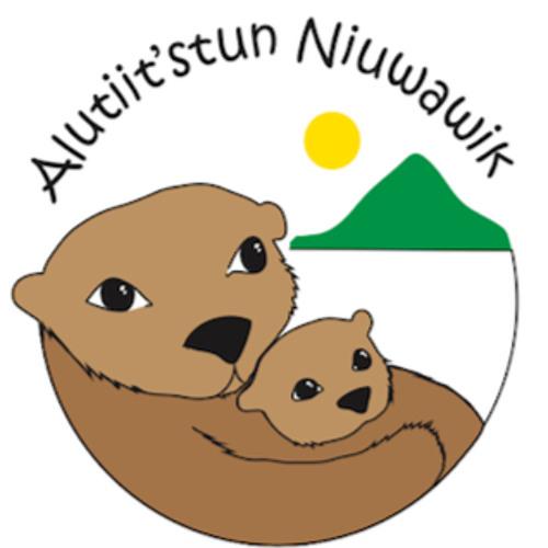 niuwawik's avatar