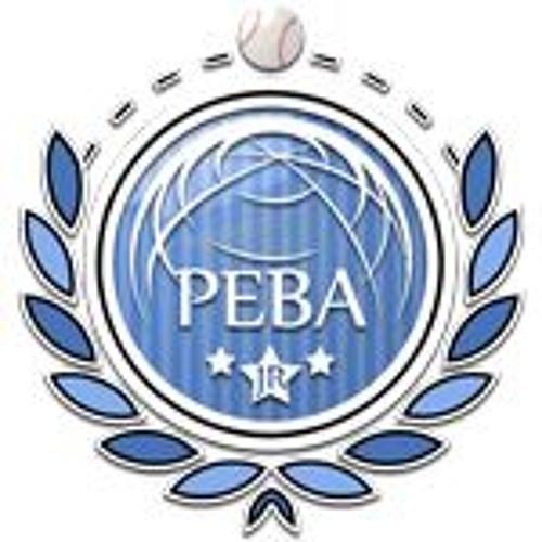 PEBA-Cast's avatar