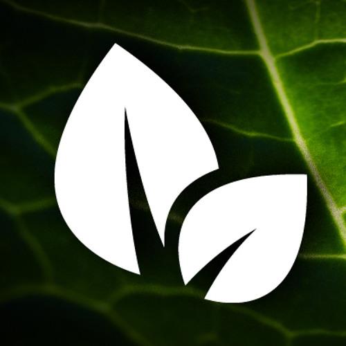 Hip Hop Leaf's avatar