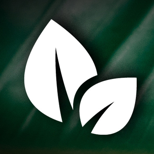 Music Leaf's avatar