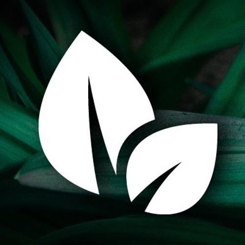 Jungle Leaf's avatar