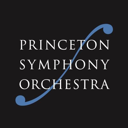 Princeton Symphony Orchestra's avatar