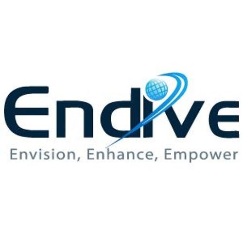 Endive Software's avatar