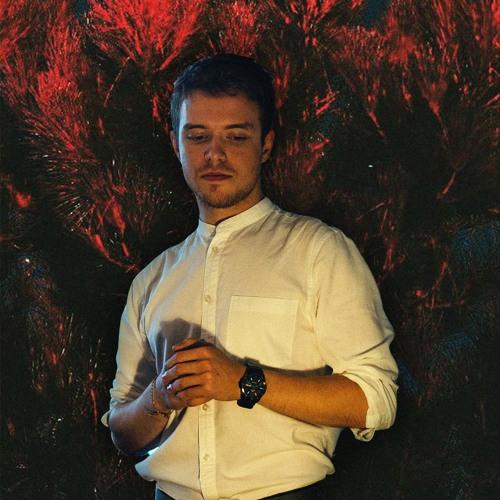 Denis Stelmakh's avatar