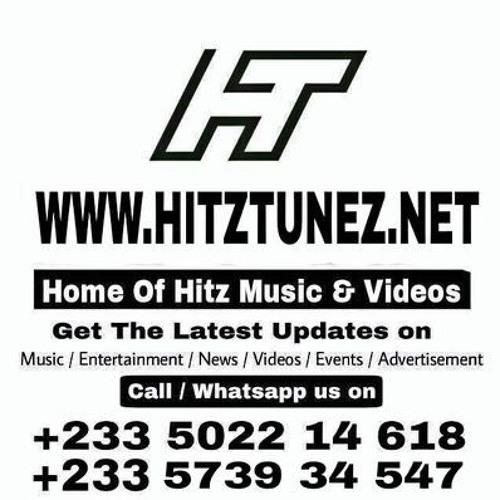 Hitztunez's avatar