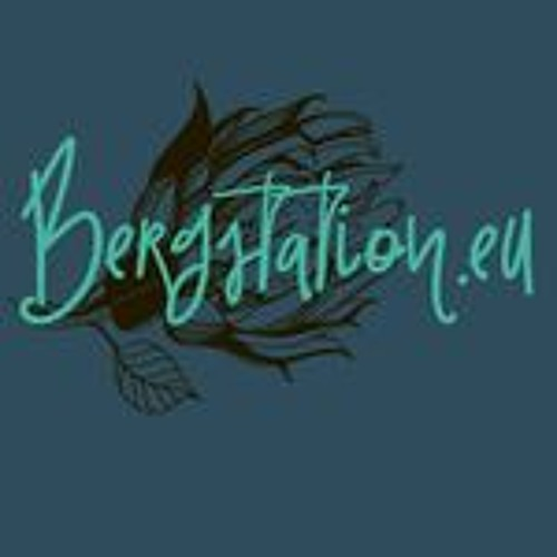 Bergstation's avatar