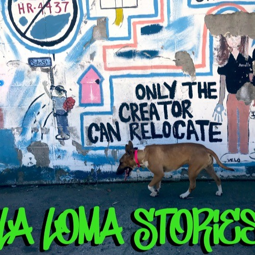 La Loma Stories's avatar