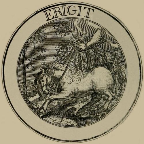 Lirpa Yeliw's avatar