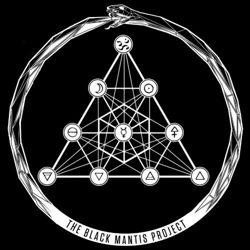 The Black Mantis Project's avatar