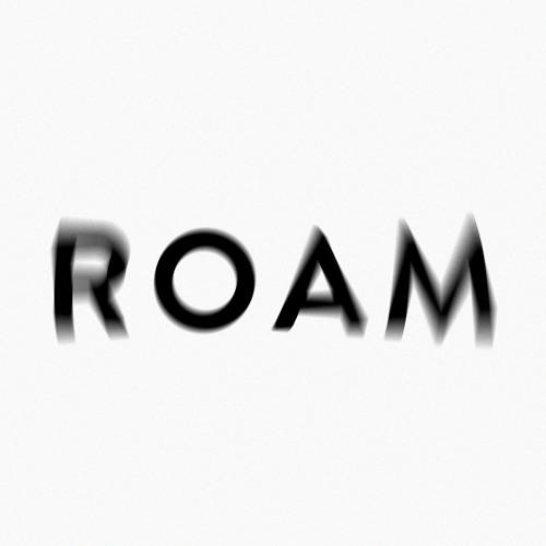 ROAM's avatar