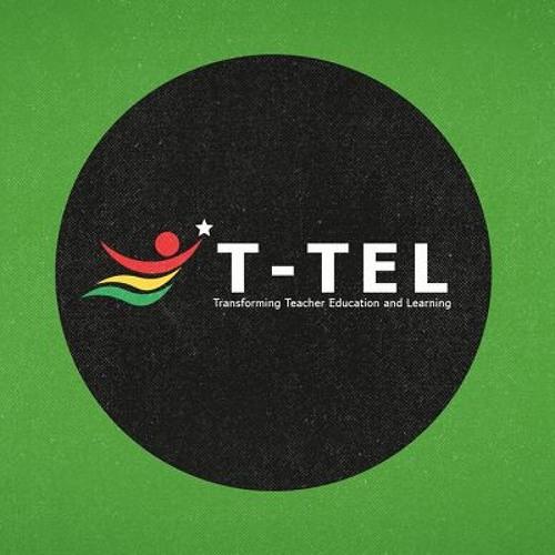 Teacher Education Reform- Ghana's avatar