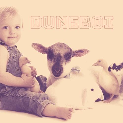 duneboi's avatar