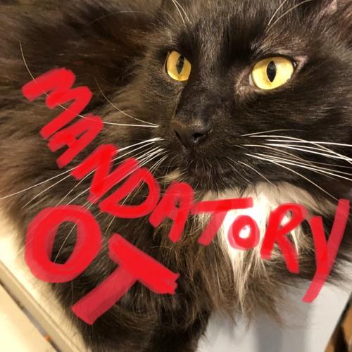 Mandatory OT's avatar