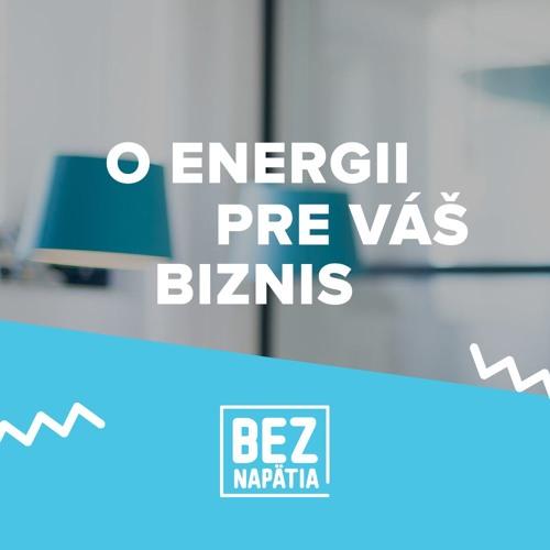 BEZ NAPÄTIA | O energii pre váš biznis's avatar
