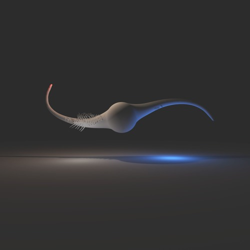 hybridfestival's avatar