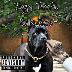 Ziggy Terrific