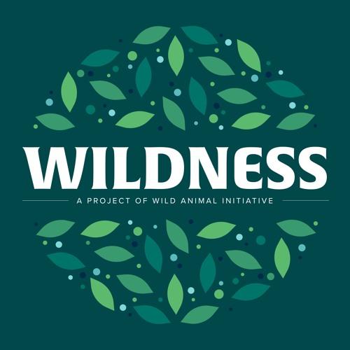 Wildness Podcast's avatar