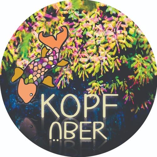 kopfüber ɹǝqüɟdoʞ's avatar