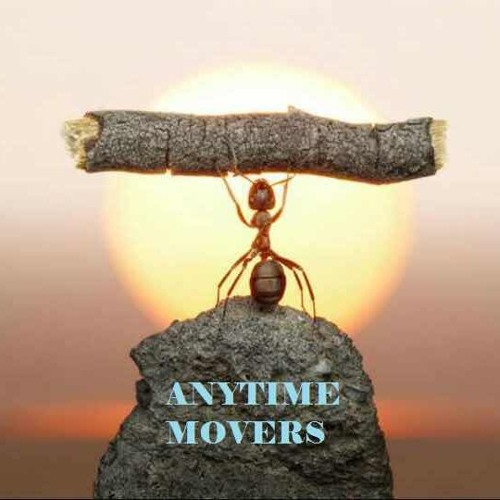 Anytime Movers Singapore's avatar