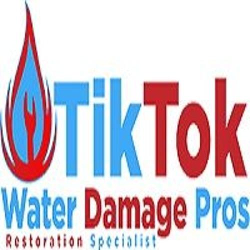 Tik Tok Water Damage Pros's avatar