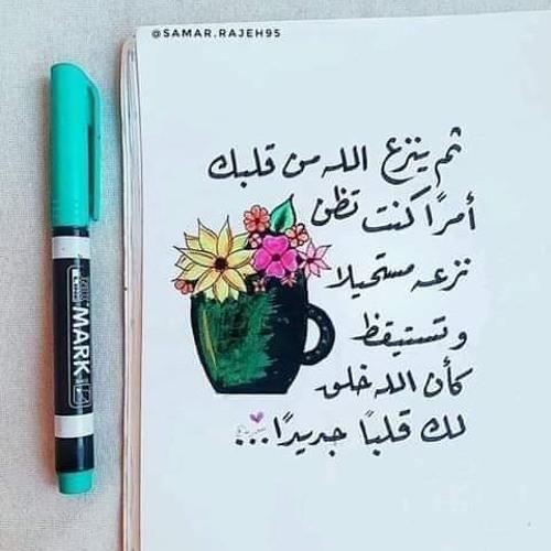Bothaina Ahmed's avatar