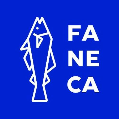 Faneca Music's avatar