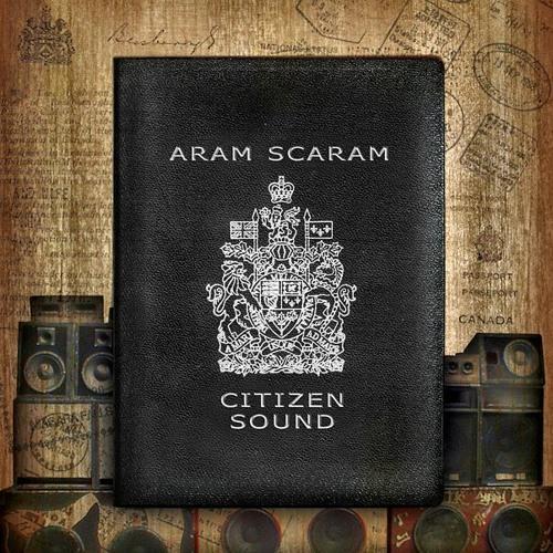 Aram Scaram's avatar